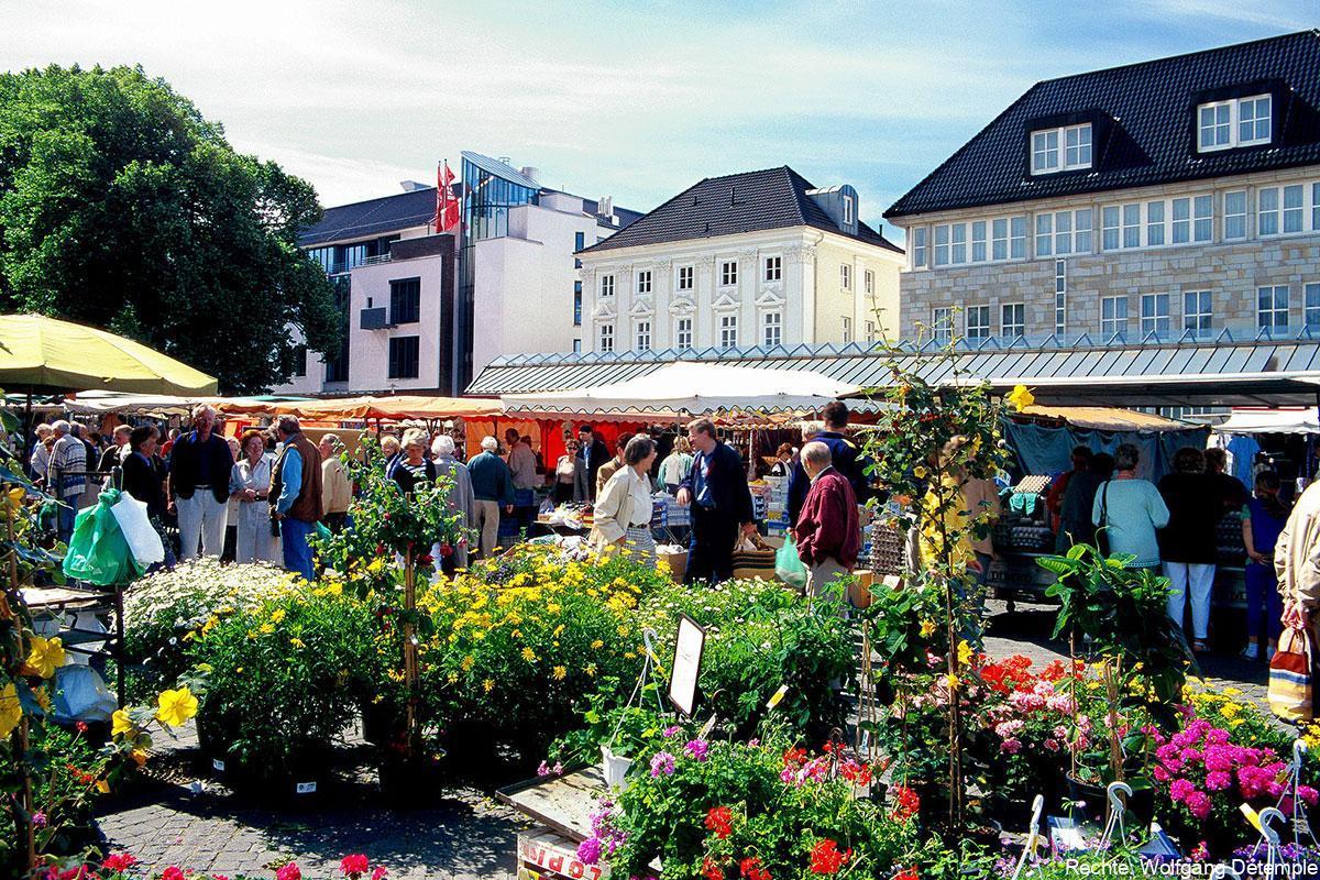 neheimer-marktplatz